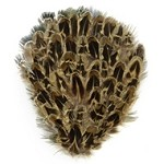 Natural Female Ringneck Feather Pad Applique Patch by PC, TFP-P5120FR
