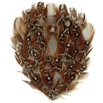 Natural Golden Pheasant Feather Pad Applique Patch by PC, TFP-P5160