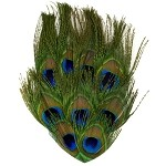 Peacock Eye Pad Applique Patch by PC, TFP-P6100P