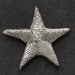 Star Iron-On Applique Patch by PC, PA-IA-T0003