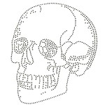 Skull Metal Rhinestuds Iron-on Motif Heat Transfer by PC, H-1828A