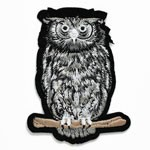 Owl Embroidered Iron-On Applique Patch by PC, TR-11351