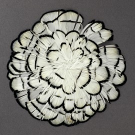 Natural White-Black-Pheasant Medallion Feather Pad Applique Patch by TFP-PM5130W-BL