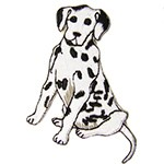 Iron-On Dog Applique Patch by PC, SP-2716