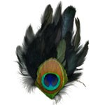Peacock Eye-Schlappen Feather Pad Applique Patch by PC, TFP-P592PBLN