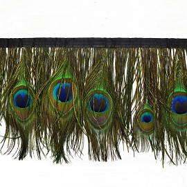 "6-1/2"" Peacock Eye Feather Trim by yard, EXP-IR8025"